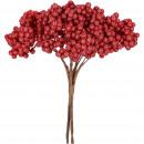 Foam berry branch